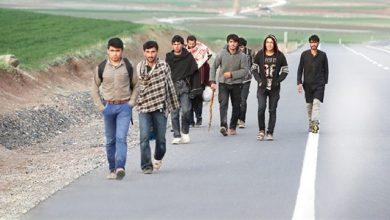 اللاجئون الأفغان