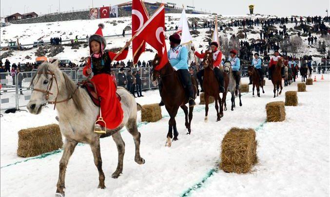 خيول تركية