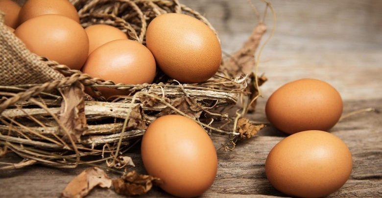 بيض تركي